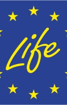 Proyecto Life+ Enerbioscrub